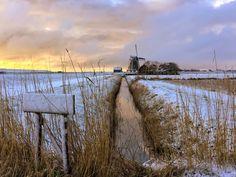 Texel door de lens van Lisette op Texel - TEXEL