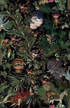 Tapeta Arte Moooi Menagerie of Extinct Animals Raven Animal Wallpaper, Home Wallpaper, Fabric Wallpaper, Forest Wallpaper, Wallpaper Designs, Botanical Wallpaper, Botanical Art, Victorian Wallpaper, Extinct Animals