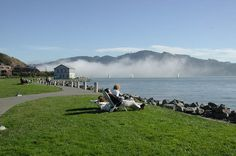 Shoreline lounging
