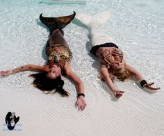 Life is the Bubbles! Relaxing in the shallows with my sea-star before the little guppies arrive!