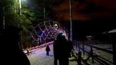 These 8 Places In Alaska Have The Most Unbelievable Christmas Decorations Magical Christmas, Christmas Fun, Christmas Decorations, Zoo Lights, Alaska, Fair Grounds, Awesome, Places, Travel