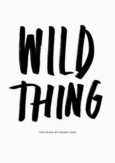 Rough 'Wild Thing' lettering poster. I love the hard edges of this brush lettering.