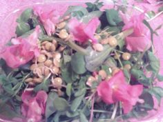 Flowers & Greens Salad from from Farmer Jay's mom.