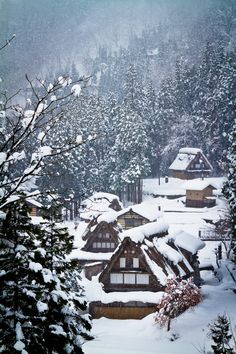 Winter in Historic Villages of Ainokura in Gokayama, Toyama, Japan Gokayama, Shirakawa Go, Winter In Japan, Aesthetic Japan, Tokyo, Visit Japan, Winter Scenery, Yamaguchi, Winter Beauty