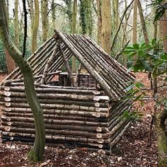 Hopefully find some time this weekend to get things moving again on this! #hiking #walking #camping #Norfolk #hammockcamping #hammock #hammocking #shelter #survivalshelter #woodland #woods #forest #bushcraft #bushcrafting #knife #knives #nature #adventure #exploring #denbuilding #den #camp #campfire #fire #wildlife #fireden #BandLBushcraft