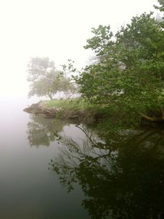 Lake in the fog