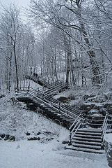 Mont Royal Park stairs in Winter