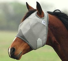 Cashel Fly Mask Standard No Ears - Yearling/Pony [Misc.] [Misc.] by Cashel. $19.30. Cashel Fly Mask Standard No Ears - Yearling/Pony [Misc.] : Cashel Fly Mask Standard No Ears - Yearling/Pony [Misc.] New