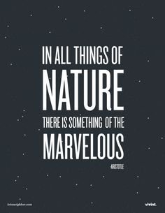 Best Aristotle Quotes 76 Best Aristotle images | Aristotle quotes, Wisdom, Attendance Best Aristotle Quotes