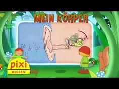 Pixi Wissen TV - Mein Körper - YouTube