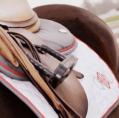 Ogilvy Equestrian Approved! Equine, Half Pad, Saddle Pad, Helmet, Saddle, Fashion, Style, Comfort, Equipment, Tack, Horse, Pony, Gray, Chestnut, Bay, Black, Horse Show, Show Jumping, Equitation, Pony