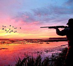 Beautiful morning duck hunt.
