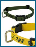 Dog Collar - R700.00 : Bioflow SA, Magnetic Therapy Bracelets & Wristbands