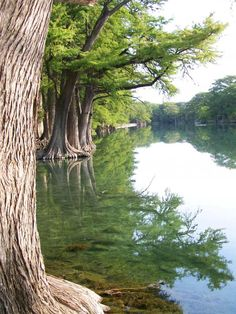 TEXAS BEAUTY Garner State Park crystal clear freezing water in frio river. more beautiful in person