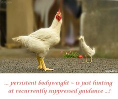 ... persistent #bodyweight ~ is just hinting at recurrently suppressed #guidance ...!