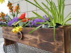 Decorative Cedar Flower Planter or Herb Garden