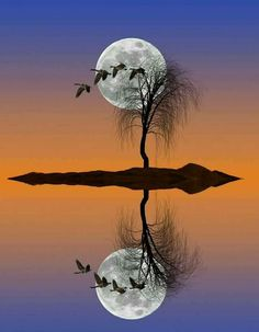 Late Evening at the Pond by Victor Caroli on Beautiful Moon, Beautiful World, Beautiful Images, Moon Photos, Moon Pictures, Moon Pics, Amazing Photography, Nature Photography, Ciel Nocturne