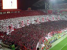 Urawa Reds - Saitama Stadium 2002 - 2008/10/22