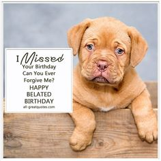 I Missed Your Birthday - Can You Ever Forgive Me? Happy (Belated) Birthday   all-greatquotes.com