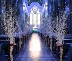 Winter theme.... Reminds me of Game of Thrones. So beautiful!