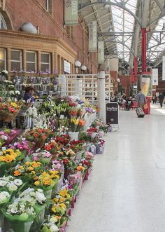 Marylebone Station, London.  I don''t think we ever got off here.  It's lovely.