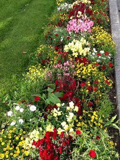 Blomsterbed i Egersund, by i Norge
