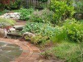 Garden. Textures.