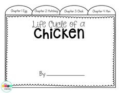 Students use their notes from close reading and text coding to create a literacy nonfiction tab booklet about the life cycle of a chicken.