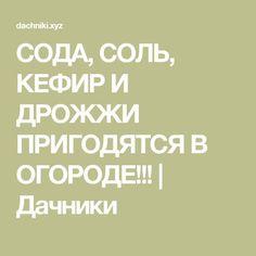 СОДА, СОЛЬ, КЕФИР И ДРОЖЖИ ПРИГОДЯТСЯ В ОГОРОДЕ!!! | Дачники