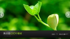 Green small tree seedlings PPT slide picture download #PPT# green PPT background image green PPT ★ http://www.sucaifengbao.com/ppt/ziran/