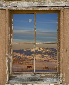A view from a farm window of horses, moon and foothills of the mountains. Bring nature indoors with our fine art picture windows , now anyone can have a window with a view in any room with our window Prints starting at $25. Copyright: James Bo Insogna BoInsogna.com .
