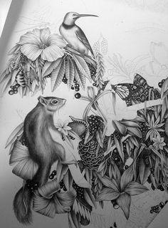 Le Gorille by Violaine & Jeremy, via Behance