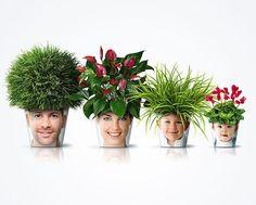 עציץ עם פנים של אנשים ושיער צמחים