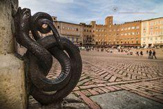 Serpente in Piazza del Campo. Foto di Domenica Prinzivalli su http://www.flickr.com/photos/orpheus1974/10521251985