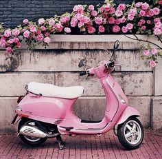 923c28c25b7 Pink motor Rosa Vespa, Pink Moped, Pink Bike, Pink Vespa, Vespa Girl
