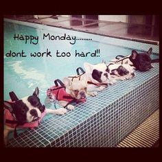 Happy Monday!!!!