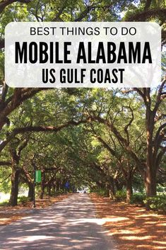 Things to do in Mobile Alabama include remarkable restaurants, cool museums, fun. - Things to do in Mobile Alabama include remarkable restaurants, cool museums, fun outdoor adventures - North America Destinations, Us Destinations, New Orleans, New York, Canada Travel, Travel Usa, Cool Places To Visit, Places To Travel, Orange Beach Alabama