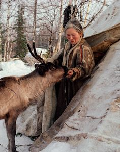 Elderly Nenets woman feeds bread to a tame reindeer at the entrance of her tent. Yamal, Siberia, Russia. © Bryan & Cherry Alexander Photography #world_cultures