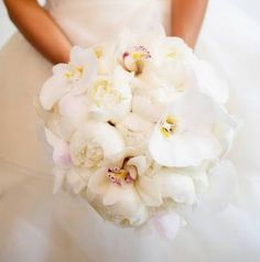 Orchids and peonies