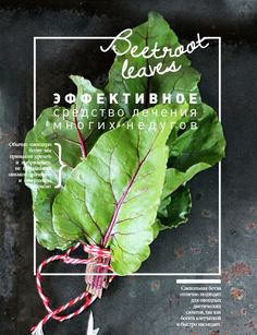 FOOD posters by Kristina