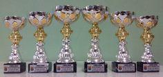 ¿Te gustaría ganar uno de los trofeos que ha preparado para los tres mejores en cada categoría la Concejalía de Fiestas del Excmo. Ayuntamiento de San Miguel de Salinas? El domingo 11. 9. 2016 tendrás la oportunidad. Para más información, mira http://www.lascanicas.es/calendario-de-competiciones-info.php?id=5