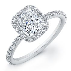 So in love with cushion cut and a halo of diamonds around it.