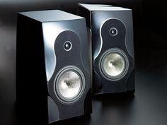 Capriccio Continuo Admonitor and Submonitor Loudspeaker System