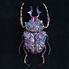 Paris-based Japanese artist Nozomi created an exquisite series of iridescent crystaline and mineral beetle specimens. Entitled The Mineral Insect, each beautiful beetle was designed using sculpting. Digital Sculpting, Colossal Art, Beautiful Bugs, Insect Art, Insect Jewelry, 3d Prints, Jewelry Design, Unique Jewelry, High Jewelry