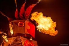 In 2014, the community was asked to design the Effigy and a Flaming Galah was born.