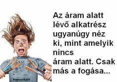 Funny Pictures, Jokes, Lol, Stupid Things, Laughing, Meme, Random, Humor, Fanny Pics
