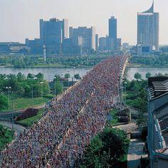 Vienna City Marathon 2012 - bring on 2013!