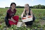 Erdbeerzeit im Spreewald 15.5. bis 30.6.2014 www.hotel-stern-werben.de