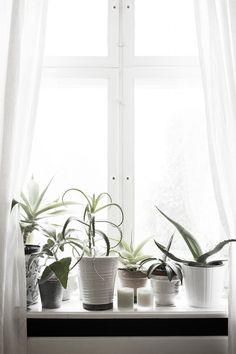 Skandinavisk Interior. Styling: Gitte Christensen Photographer: Pia Winther