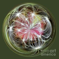 #ORNAMENTAL #DANDELION #Orb #Art #Sphere Quality Prints and Cards at: http://kaye-menner.artistwebsites.com/featured/ornamental-dandelion-kaye-menner.html  -